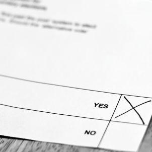 Referèndum Vot sí no (CGP Grey)