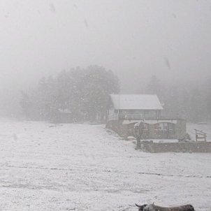 nevada al juny Font Romeu