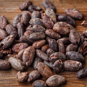 Cacao Pixabay