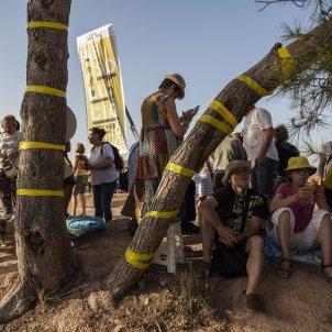 llaços grocs Lledoners manifestacio Absolucio - Sergi Alcàzar
