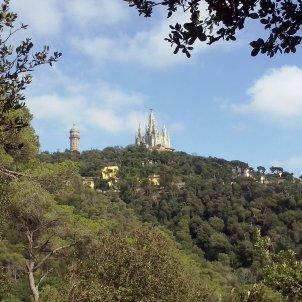 El Tibidabo visto desde el Parque de Collserola Iriartejaialai Wikipedia