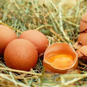 Huevos Pixabay