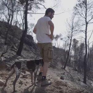 Incendis La Ribera, les Garrigues Segria plataforma Rebrotem