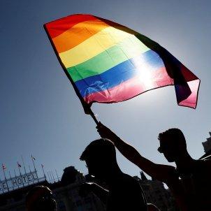Orgull Madrid bandera - Efe
