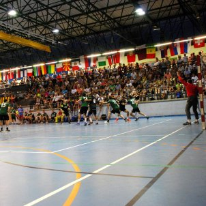Foto Handbol Sant Esteve Sesrovires