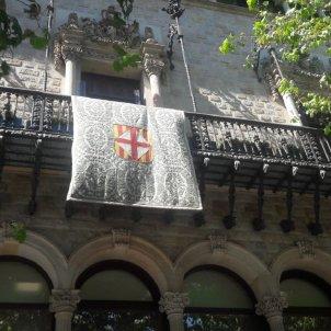 llaç groc diputacio barcelona