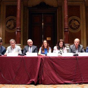 ICAB colegis advocats estat - ACN