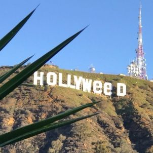 hollyweed @stephenfry