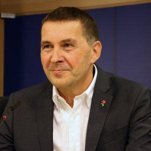 Arnaldo Otegi Parlament Europeu ACN