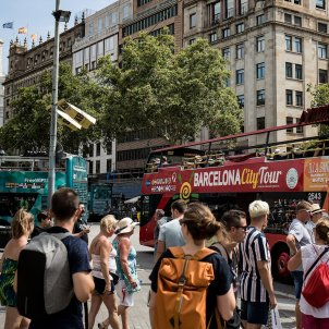 bus turistic turisme barcelona autocar autobus - Carles Palacio