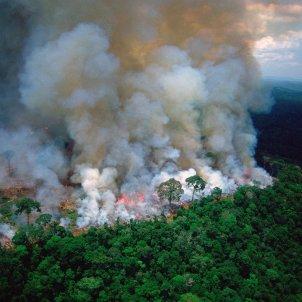 Amazones cremant @ climate crisis