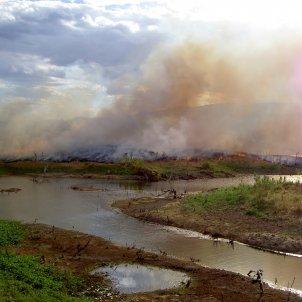 Incendis per aclarir terreny Brasil (Alzenir Ferreira de Souza, Pixabay)