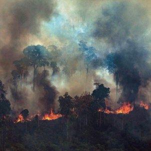Incendi Amazònia - EFE