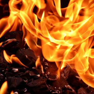 Foc (Alexas, Pixabay)
