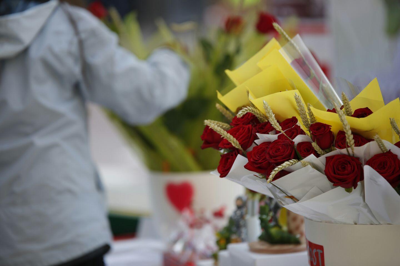 Roses de Sant Jordi / Sergi Alcàzar