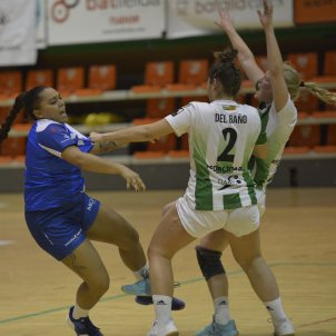 Handbol (Associació Lleidatana)