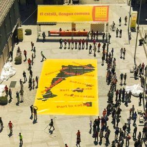 El català és la llengua comuna