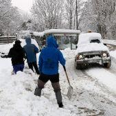 nevada pallars acn