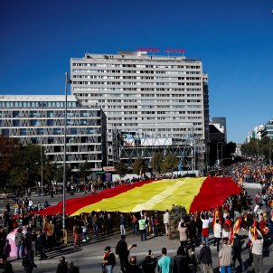 manifestacio vox madrid  bandera espanya - efe