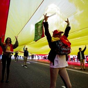 manifestacio vox madrid bandera espanya gegant - efe