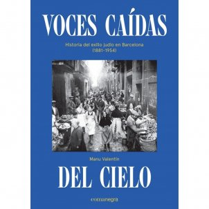 Manu Valentín, 'Voces caídas del cielo'. Ed. Comanegra, 266 p., 20 €.