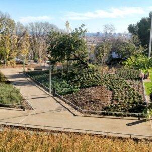 jardins doctor pla i armengol ajt Barcelona