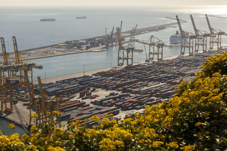 Exportacions Sergi Alcàzar