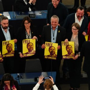 free junqueras parlament europeu diana riba alde - roberto lazaro
