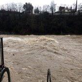 riu ter temporal gloria ACN