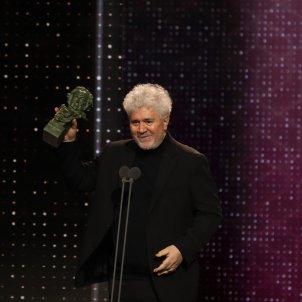 EuropaPress 2612665 Mejor guion original para Pedro Almodóvar por Dolor y gloria en la a XXXIV edición de los Premios Goya en Málaga (Andalucía España) a 25 de enero de 2020